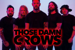 MF2020-THOSEDAMNCROWS-IWweb