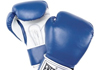 Image for INVERNESS ABC BOXING