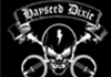 Image for HAYSEED DIXIE